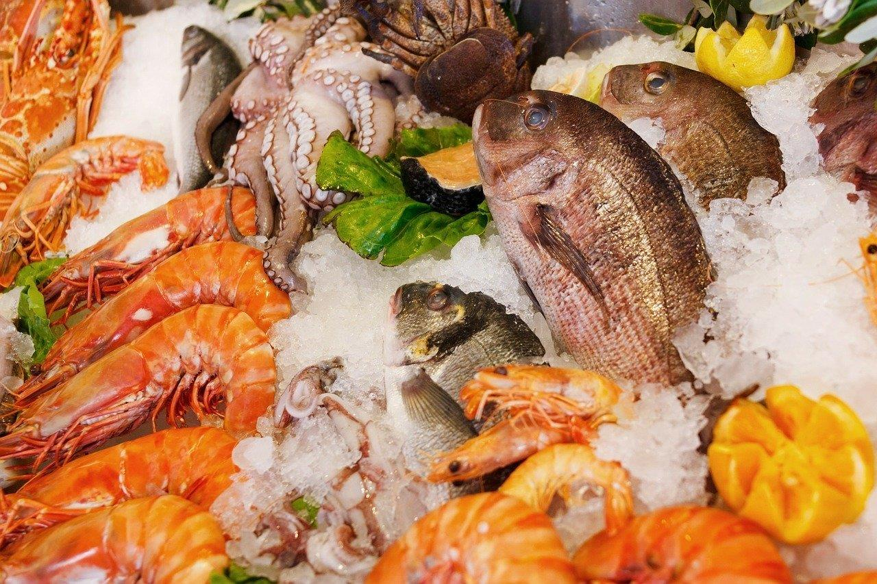 New project to extend fish and seafood shelf-life and reduce food waste