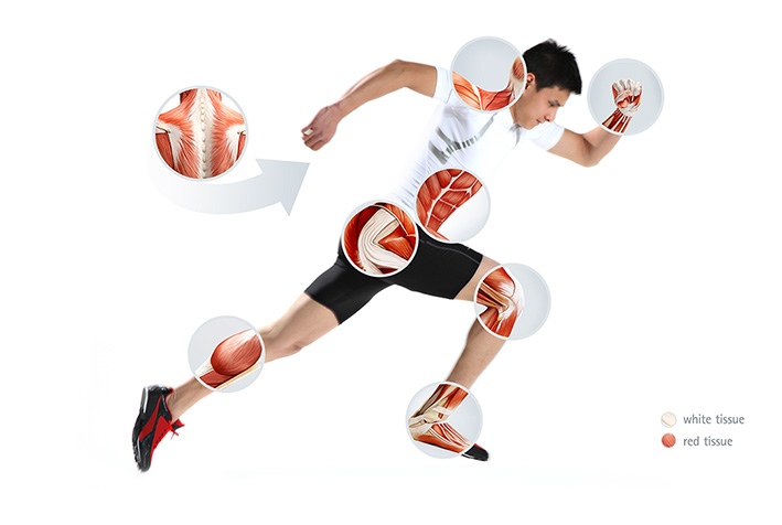 Game on with GELITA® Bioactive Collagen Peptides and Gelatin